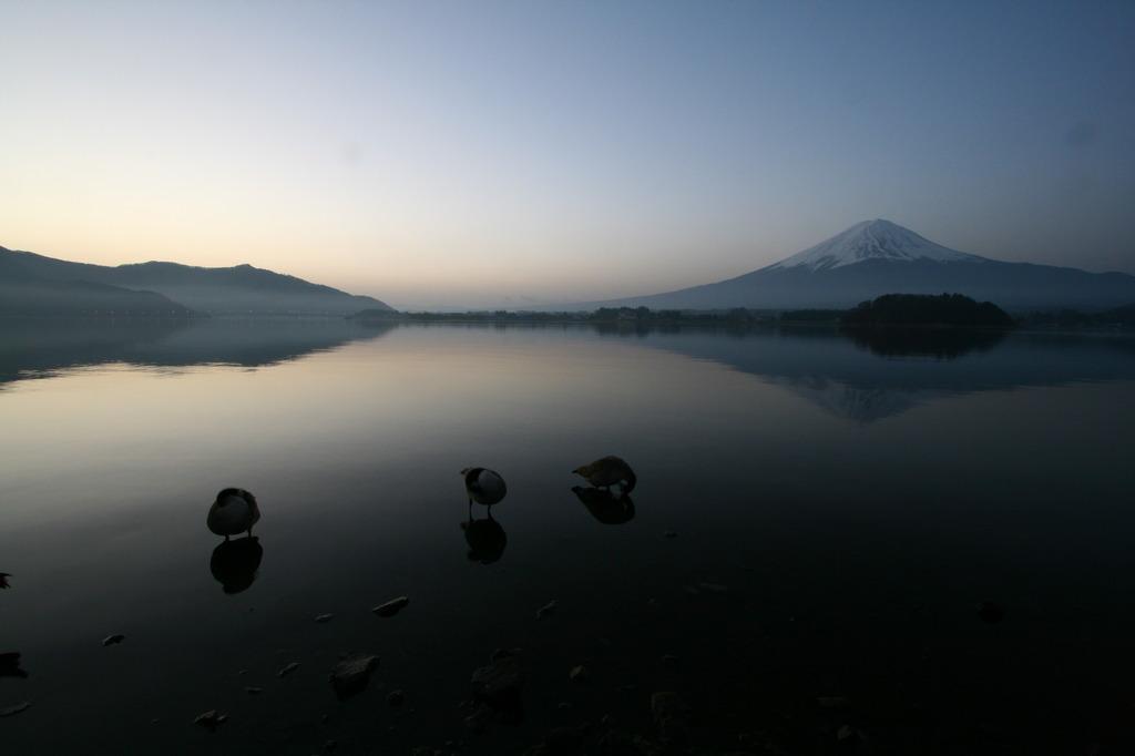 湖面に映る