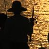 Shadow  fishing