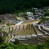 Shimizu Tanada(Rice terraces) 2010