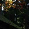高野山にて5