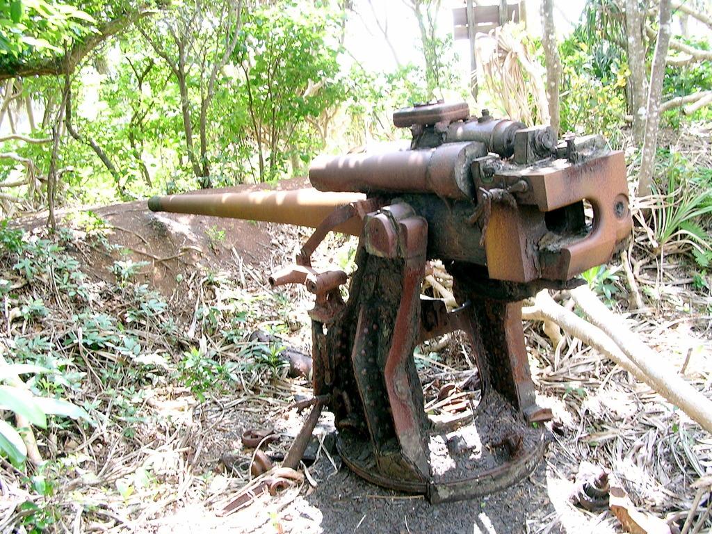 朽ちた高射砲