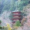 長谷寺 五重塔