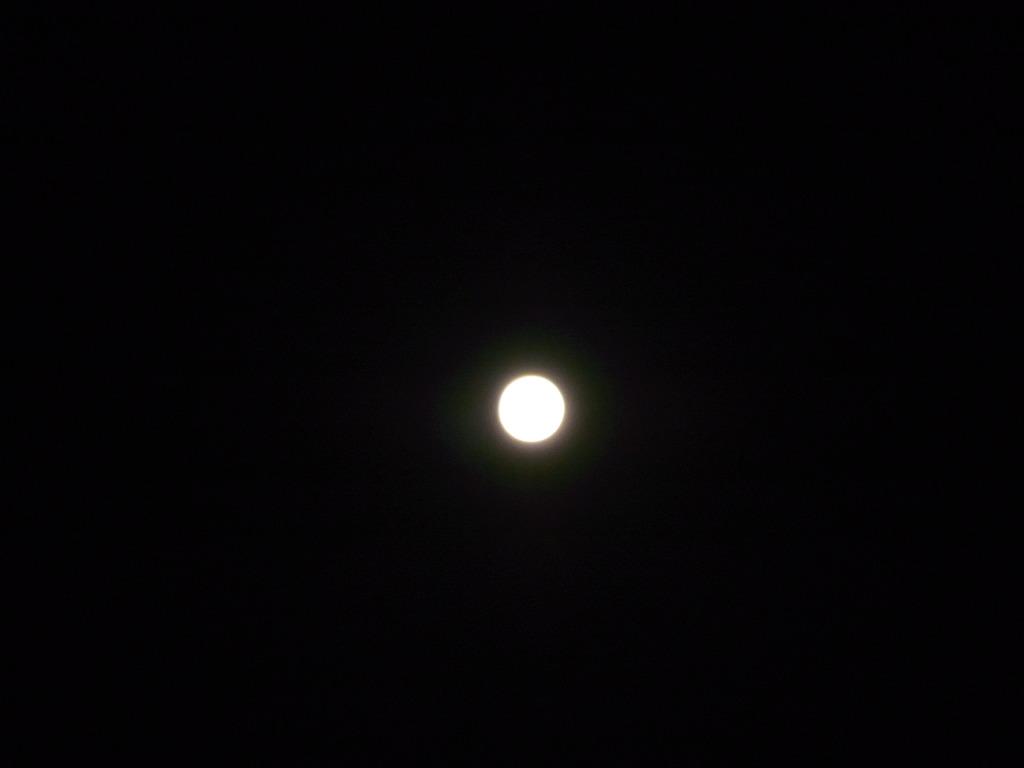 中秋の名月+1日