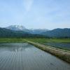 田園と雪山