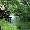 水車小屋のある風景Ⅱ