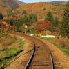 秋色行きの列車に乗って