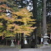 金桜神社の石段_その1