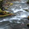 Neat flow