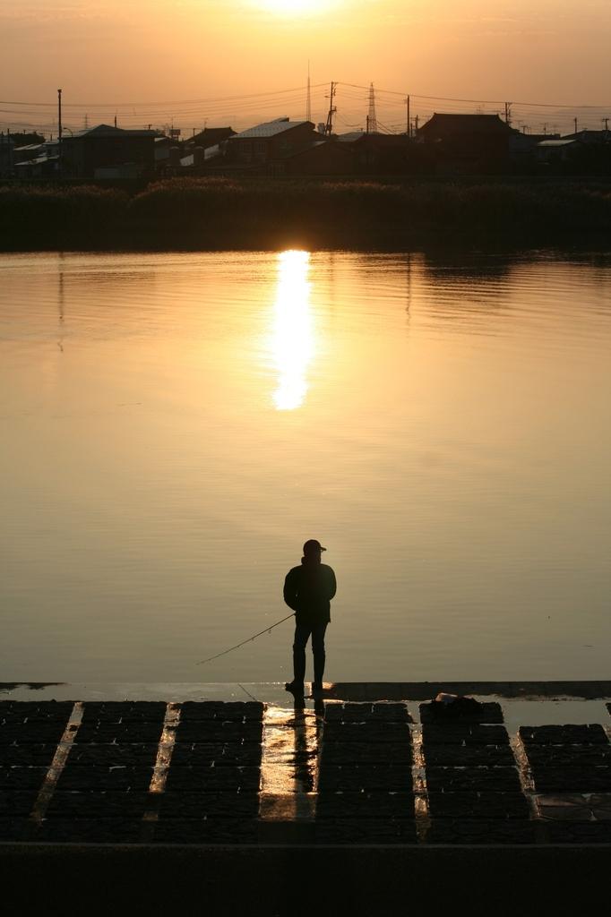 上越関川の秋朝
