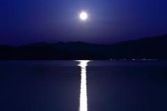 Road of moonlight