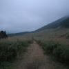 朝の仙石原