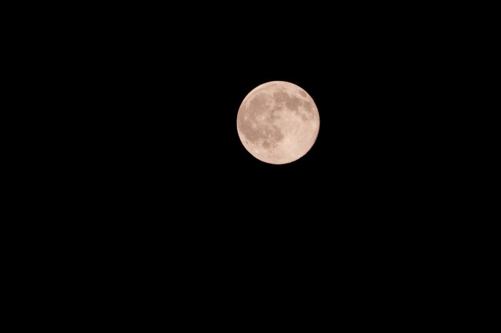 一日遅れの中秋の名月。