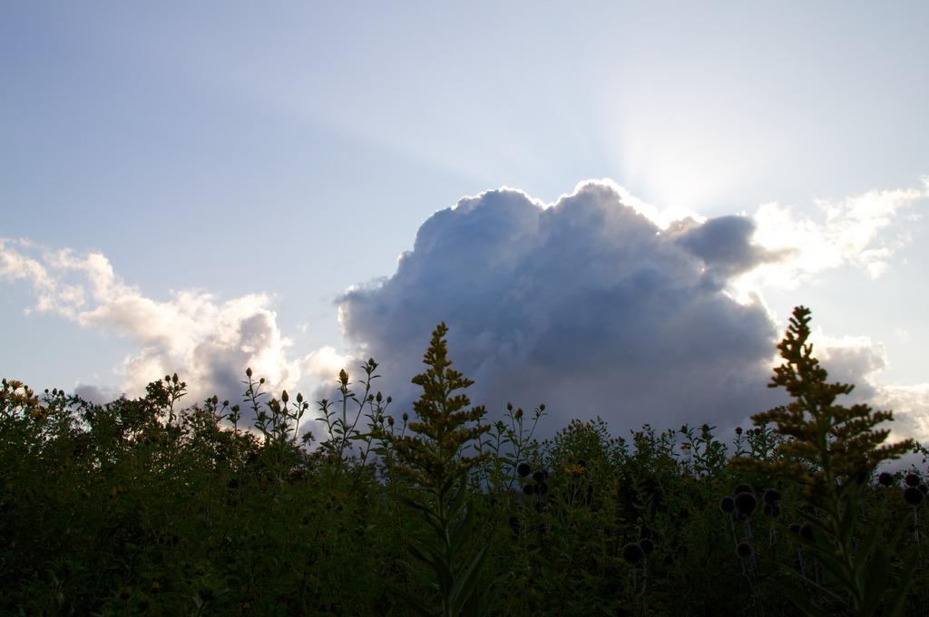 雲のあい間から