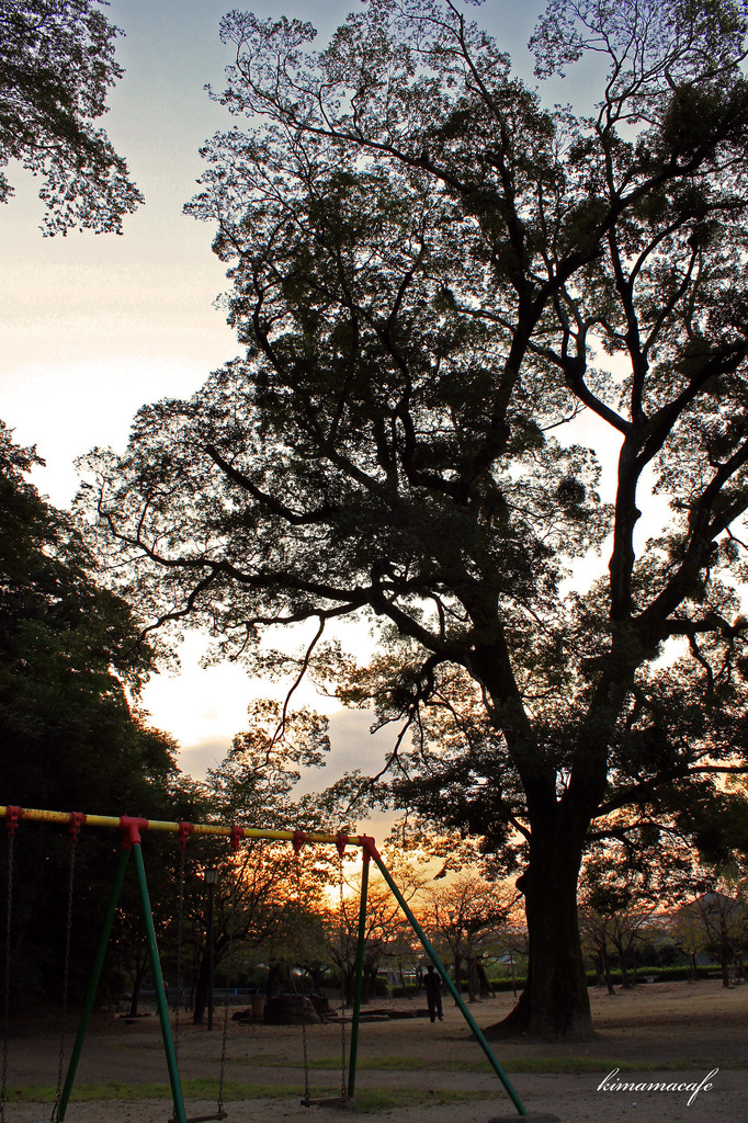 日が沈みかける公園