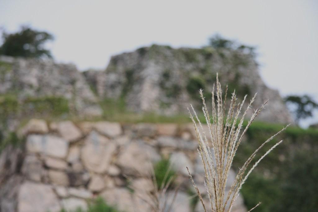 兵庫 竹田城