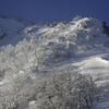 鬼面山の雪景