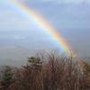 冬枯れの虹