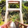 キャンプ場の橋