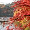三河湖 紅葉