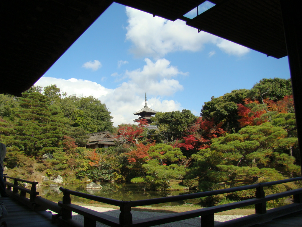 仁和寺の中庭