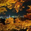 紅葉と京都タワー