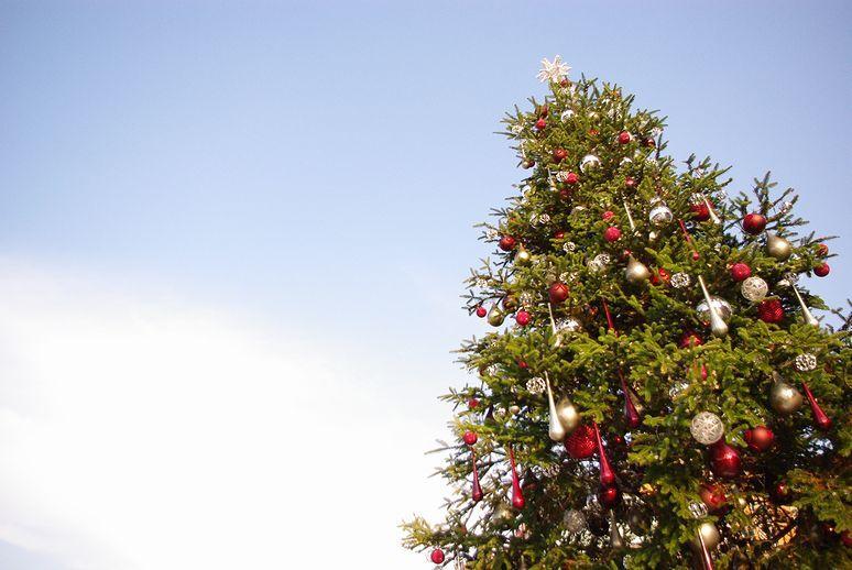 青空とクリスマスツリー