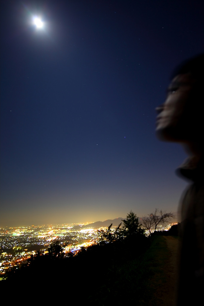 四王子の夜景
