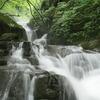 青森奥入瀬渓流