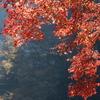 鎌北湖 ~赤いカーテン~