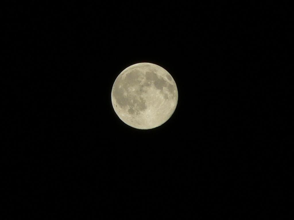 今夜の月です♪