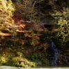 幻の滝と紅葉