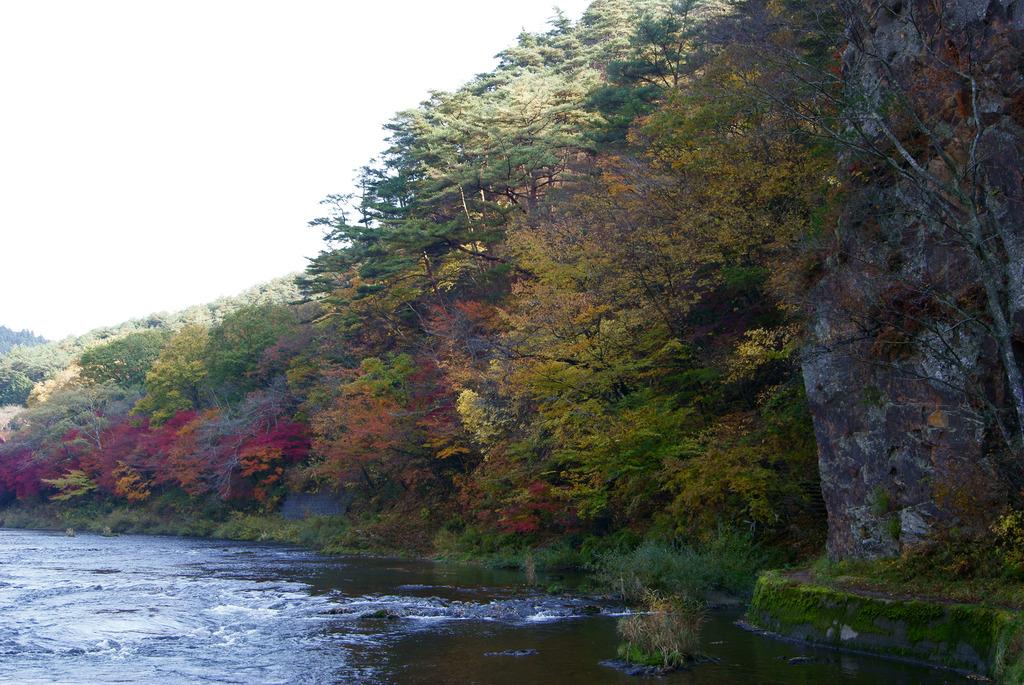 久慈川河畔の色とりどりのもみじ