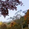 秋の矢祭山