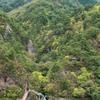 黄葉の渓谷