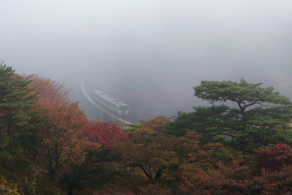 秋の朝もやの中鉄橋を渡る水郡線