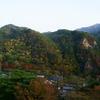 西日さす紅葉の桧山