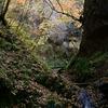 秋の夢想滝遊歩道
