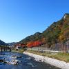 夢想橋から見た矢祭山の紅葉