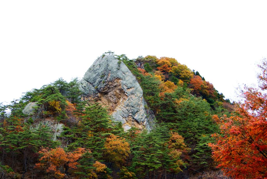 錦秋の大だるま岩