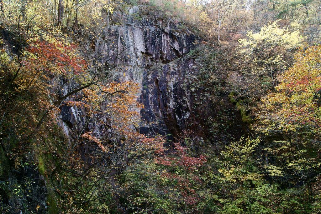 夢想滝そばの岩壁の紅葉