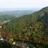 西日さす秋の桧山〜夢想苑