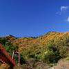 見上げるあゆのつり橋と晩秋の矢祭山