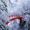 雪の月見橋