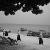 Zanzibar 白い浜