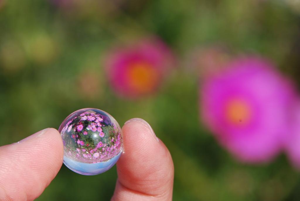 ガラス玉の中の世界