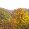 釣瓶落峠の秋