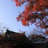 修禅寺に行ってきました①