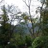 祖谷渓キャンプ場の朝②