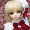 IMG_3630L