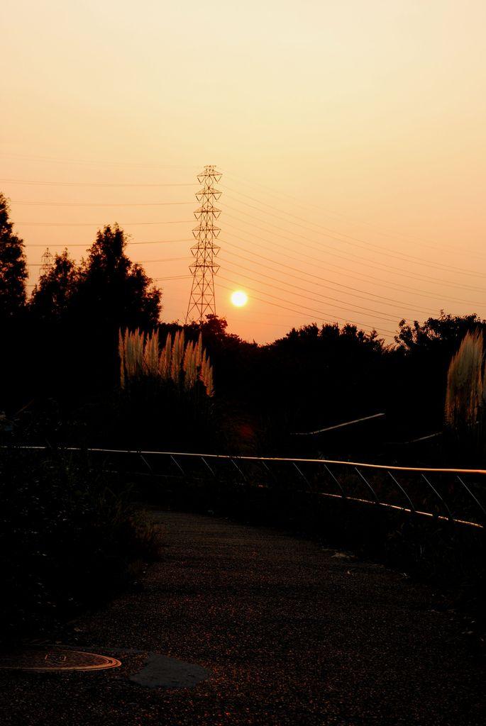 とある公園の夕日
